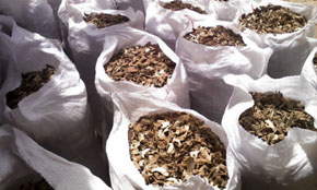 China Dried Ginger Stock